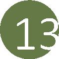 13 zöld